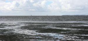 Wadden Sea I